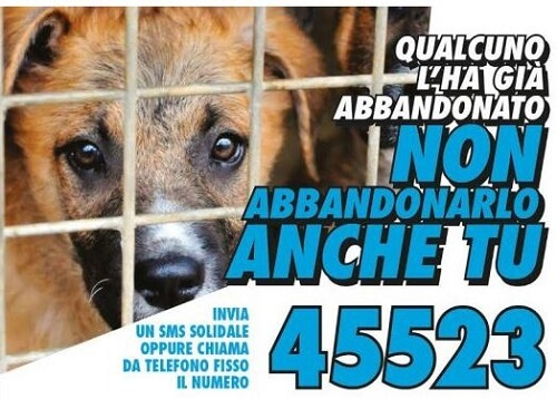 SMS solidale 45523